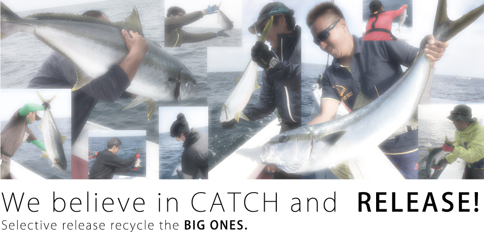 We believe in CATCH and  RELEASE!